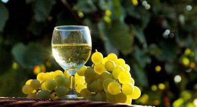 Полезно ли белое сухое вино при всд