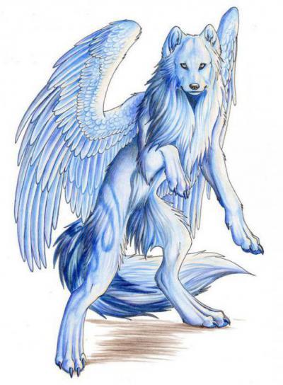 как называется волк с крыльями