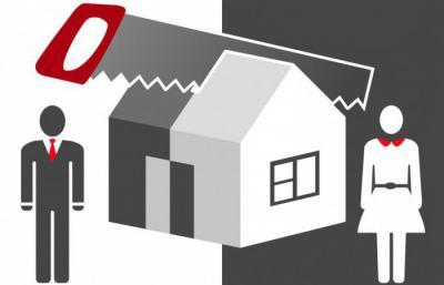 Перепелка в квартире: особенности и правила содержания