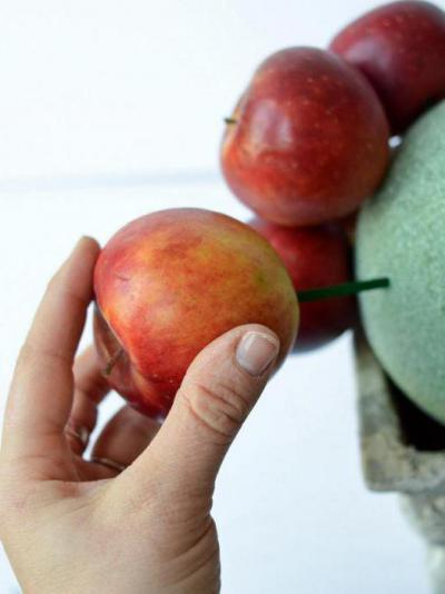Топиарии из натуральных фруктов
