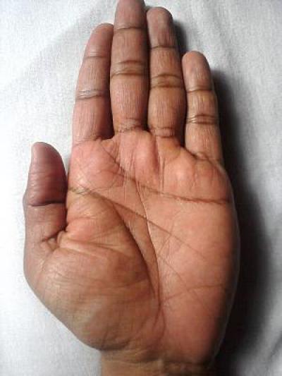 креветок, линия долголетия на руке фото больше подходят