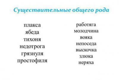 русский язык род слова
