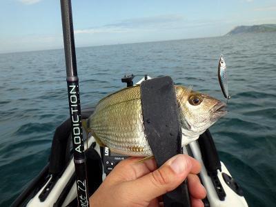 Рыбалка на Азовском море: особенности, интересные факты и рекомендации