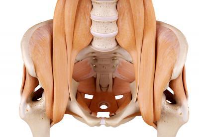 Как быстро растянуть тазобедренный сустав
