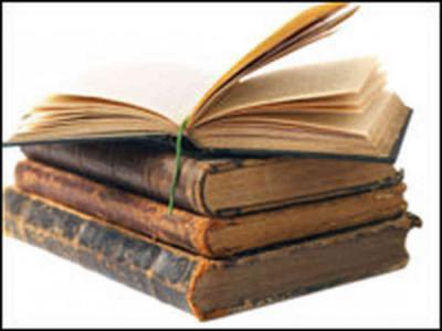 белый пудель читать для дневника