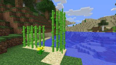 Как сделать в майнкрафте сахарный тростник фото 861