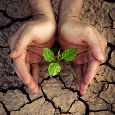 Изображение - Земельное законодательство регулирует отношения 2965835