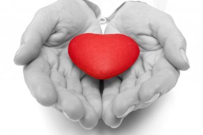 Изображение - Как создать благотворительный фонд с нуля 3227576