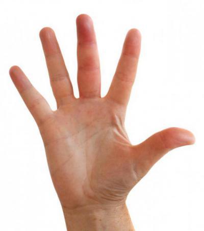 Палец мизинец на руке опух на третьем суставе плечевой сустав кости связки мышцы