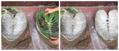 Цементный раствор по дереву ваза уличная бетон купить