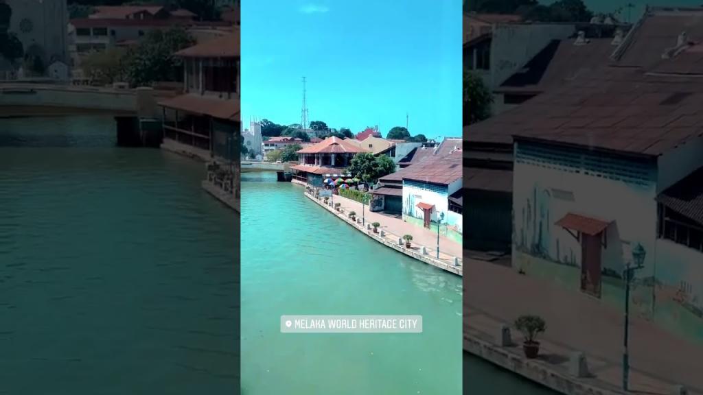 Житель Малайзии показал, как сейчас выглядит местная речка, которая стала чище за время карантина (фото и видео)