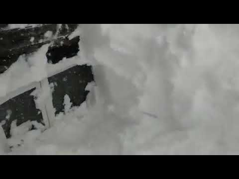Снегопад на Сахалине завалил дома до крыш: как люди выбираются (видео)